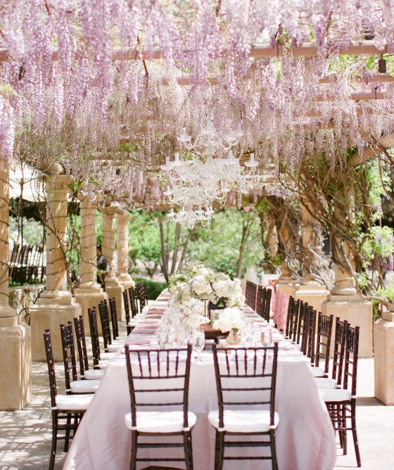 canopy_wisteria_over_wedding_table