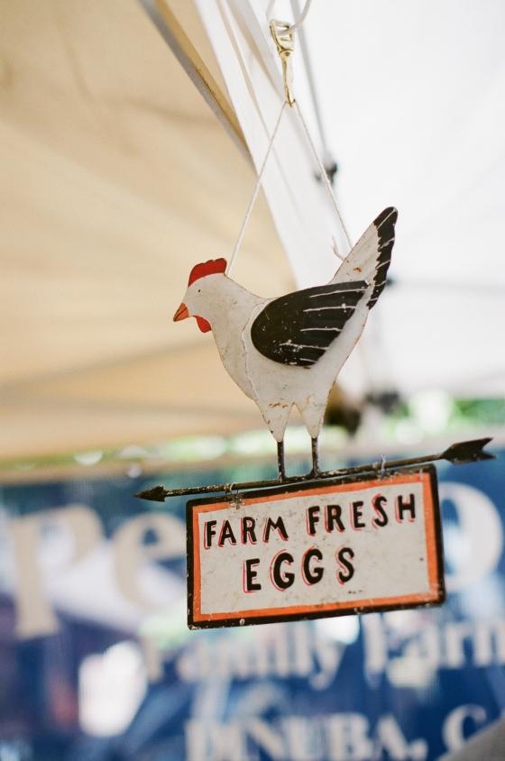 famers_market_eggs