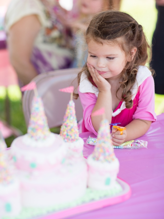 admiring_princess_cake