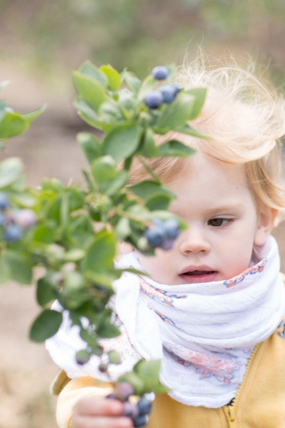 blueberries_and_a_child